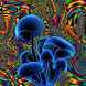 Shrooms Live Wallpaper HD by Live Wallpaper HD