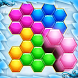 Block Match : Hexa Game Puzzle by What The Fun Games (WTF)