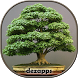 Bonsai Design Ideas by dezapps