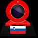 Webcams Slovenia by Smart Cameras