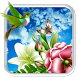 Humming Bird Live wallpaper by creative 3D Themes