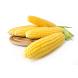 Как варить кукурузу by Nikolay1991
