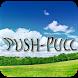 Push Pull by Sugulu Factory