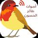 تغريد طائر الحسون by supernana