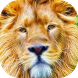 Sparkling lion live wallpaper by Attunable