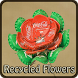 RECYCLED FLOWER by Colliyoyo