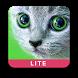 Карточки с животными учим by Logomotiv LLC