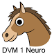 DVM 1st Yr Quiz - Neurology by Ruval Enterprises