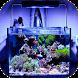 Aquarium Design by Marasheta