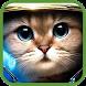 Funny Animals Videos by vietlieu