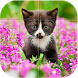 Babies Animals Puzzle by Style Games