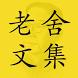 老舍文集(繁體版)