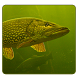 Рыбалка. Советы by Safjanov