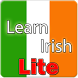 Learn Irish Lite {demo} by dkspex