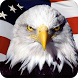 Eagle HD Wallpaper by Holiday Wallpaper