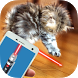 Real laser cat simulator by AppAche