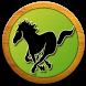 【無料】競馬予想・競馬情報を駆使して投資へ by ギミック