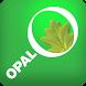 OPAL Tree Health Survey by Fera