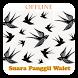 Suara Pemanggil Burung Walet Offline