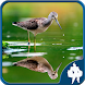 Reflection Jigsaw Puzzles by Titan Inc