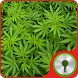 Marijuana Theme for GO Locker by Best Pictures Themes