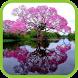 Beautiful River Pics by vietlieu