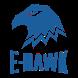 E-Hawk by HOOTOO.COM INC