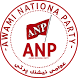 ANP Party by IT Artificer