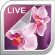 Orchid Live Wallpaper by Ultimate Live Wallpapers PRO