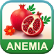 Anemia Care Foods & Diet Tips by SendGroupSMS.com Bulk SMS Software