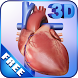 My Heart Anatomy by visual 3d science