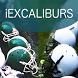 iExcaliburs 2015