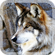 Wild Wolves Live Wallpaper by Modern LWP Creator