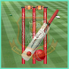 Today Cricket Live scores by tulihost