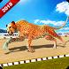 Wild Cheetah Racing Fever: Animal Simulator Race by Engaging Games Studio