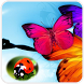 Insects Wallpaper by Sirikarn Wall