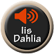Lagu Dangdut Iis Dahlia by Dirgantara Developer