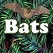 Best Bats sounds by MarcosMusic
