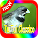 Canto de Coleiro Tui Tui Classico by canto de app