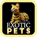 Exotic Pets by Xovato