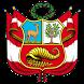 Constitución Política del Perú by codespace