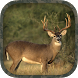 Whitetail Hunting Calls by Pico Brothers