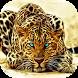 Cheetah Live Wallpaper by Revenge Solution