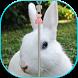 Cute Bunny Zip Unlock by Shineapps