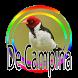Galo de Campina - Canto de Açoite by PerothaDev