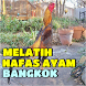 4 Cara Ampuh Melatih Nafas Ayam Bangkok by Padepokan Cirebon-Banten