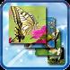 Puzzle Champions by Paracel Team