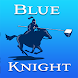 Blue Knight Pool Service by Westrom Software