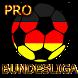 Widget Bundesliga PRO 2015/16 by Artiic