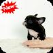 French Bulldog puppy by Seaweedsoft